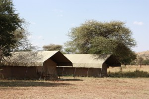 Ronjo Camp Serengeti